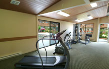 Newly Equipped Fitness Centre - BEST WESTERN PLUS Austrian Chalet Hotel